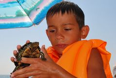 Boy with a turtle Royalty Free Stock Photography