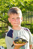 Boy with turtle Royalty Free Stock Image