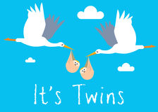 Boy Twins Birth Illustration Stock Photo