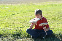 Boy with two parasol mushrooms Stock Photo