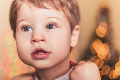 Boy with two teeth. In front of a Christmas tree Royalty Free Stock Images