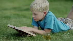 Boy typing on phone. Blond boy typing on smartphone and smiling sitting outside in a yard stock footage