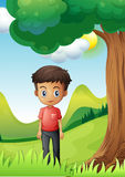 A boy under the shade of a big tree Stock Images
