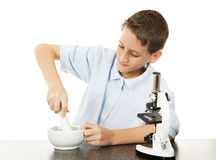 Boy Uses Mortar and Pestle Royalty Free Stock Images