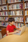 Boy using laptop in the library. Cute little boy using laptop in the library Stock Image