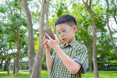 Boy using smart phone in park Stock Image