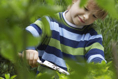 Boy Using Trowel In Garden Royalty Free Stock Images