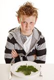 Boy with vegetarian dinner Royalty Free Stock Photo