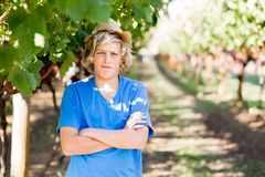 Boy in vineyard royalty free stock photography