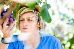 Boy in vineyard Royalty Free Stock Image