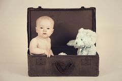 Boy in Vintage Suitcase Royalty Free Stock Images