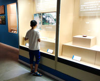 Boy visiting the museum Royalty Free Stock Image