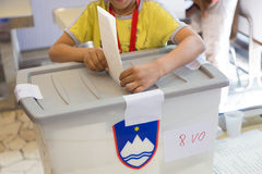 Boy voting on democratic election. Stock Images