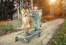 Boy walk with dog in shopping trail Stock Photo