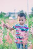 Boy Walking on Bush-covered Field Selective Focus Photo Stock Photography