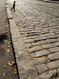 Boy walking cobblestones Royalty Free Stock Image