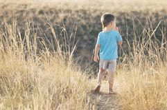 Boy walking in the field barefoot royalty free stock images
