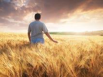Boy walking through a field or meadow stock photo