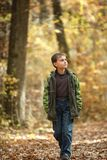 Boy walking through forest Royalty Free Stock Image