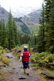 Boy walking in nature Royalty Free Stock Photography