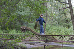 Boy walking over a bridge in the forest. On cold day Royalty Free Stock Photography
