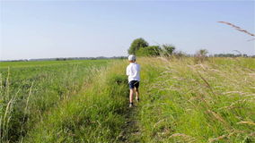 Boy walking the path in the grass stock video