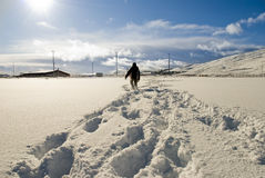 Boy is walking on the snow Stock Images