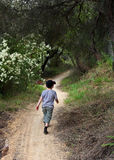Boy on walking track Stock Photos