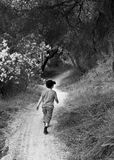 Boy on walking track Stock Photo