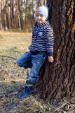 The boy is walking in the woods. The boy walks through the forest in the spring stock photos