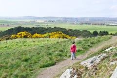 Boy walking Royalty Free Stock Image