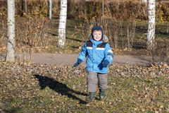 Boy walks in autumn park royalty free stock photos