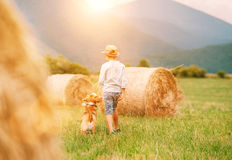 Boy walks with beagle dog on green mountain meadow with haystack Royalty Free Stock Photos