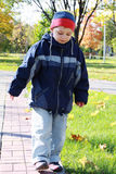 Boy walks in park Stock Images