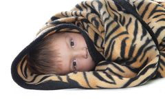 Boy warped up with counterpane Royalty Free Stock Photo