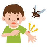 Boy was stabbed in the mosquito Royalty Free Stock Photography