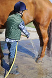 Boy wash his horse Stock Photos