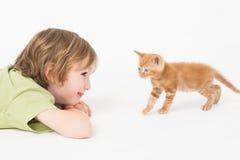 Boy watching kitten walking on white background Royalty Free Stock Photos