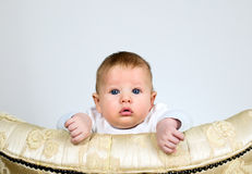Boy is watching through a top of chair Royalty Free Stock Photos
