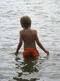 Boy in the water. Ready for a splash or a swim Stock Image