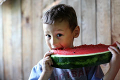 The boy with water-melon Stock Images