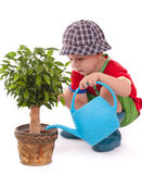 A boy with a watering-can stock photo