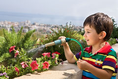 Boy watering flowers Royalty Free Stock Photo