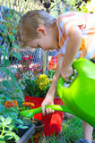Boy Watering Flowers royalty free stock photography