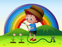 Boy watering flowers in garden Royalty Free Stock Photos