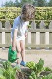 Boy watering the garden standing Stock Photo