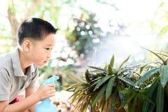 Boy watering garden Royalty Free Stock Image