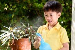 Boy watering garden stock images
