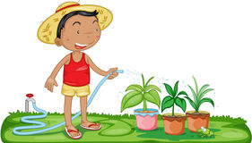 A Boy Watering Plants Royalty Free Stock Images
