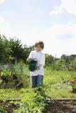 Boy Watering Plants In Garden Stock Image